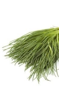 Barba di frate, agretti: proprietà e benefici