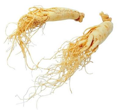 Ginseng: Properties and Benefits