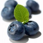 Nutrition and Anticancer Diet: Blueberries