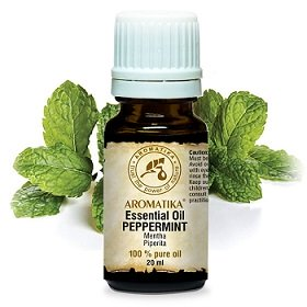 Essential Oil of Peppermint 20ml - India - Natural and Pure 100% - Natural Calming - for a Good Sleep - Home Fragrances - Aromatherapy