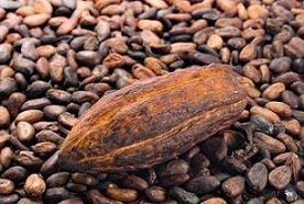 Cacao: proprietà e benefici