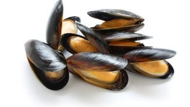 Photo of Cozze: Proprietà e Benefici