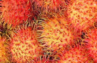 Rambutan: proprietà e benefici