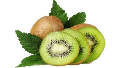 Photo of Il Kiwi Fa Bene alla Digestione